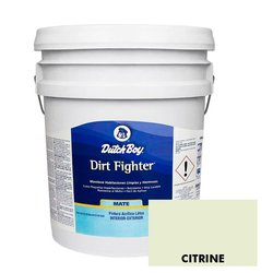 Pintura Acrilica Dirt Fighter Pastel Citrine SW6714.F 19 Lt