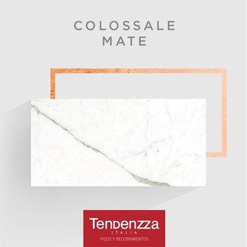 Piso Colossale Tendenzza 60 x 120 cm Mate
